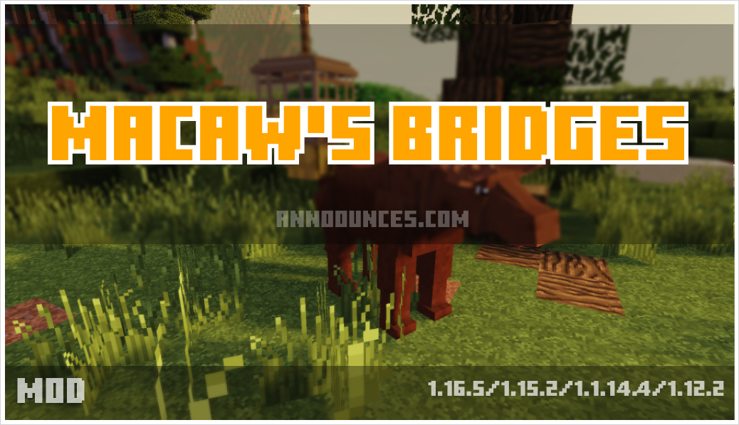 Macaw's Bridges