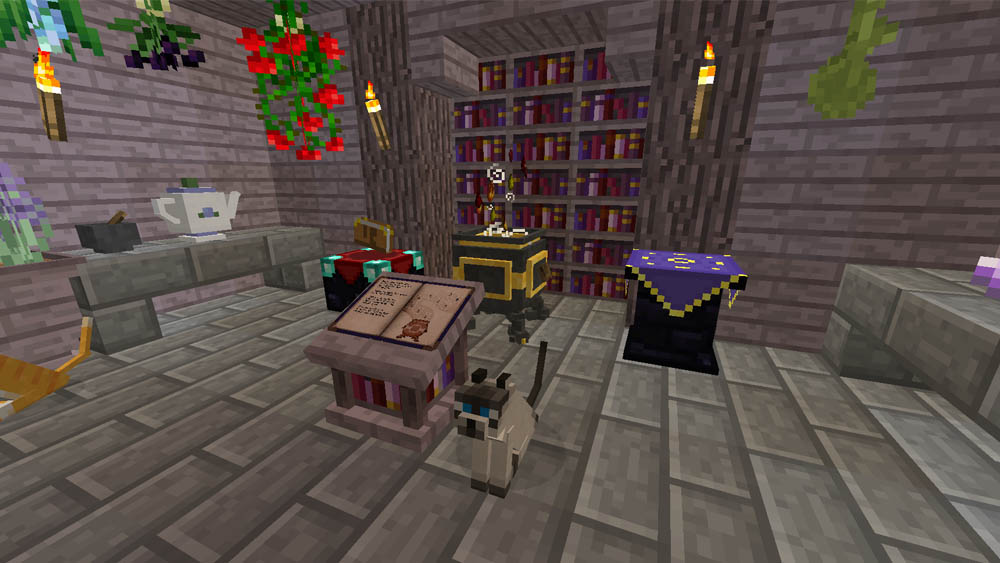 A Magician's Library