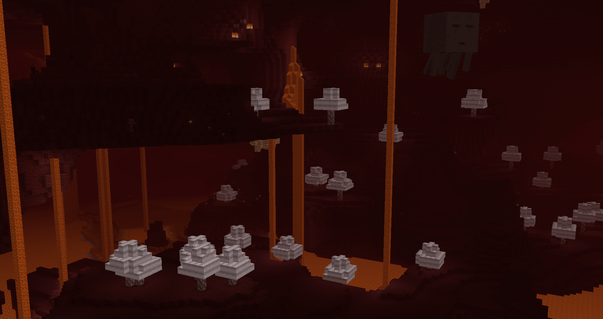 Another shot of the Nether