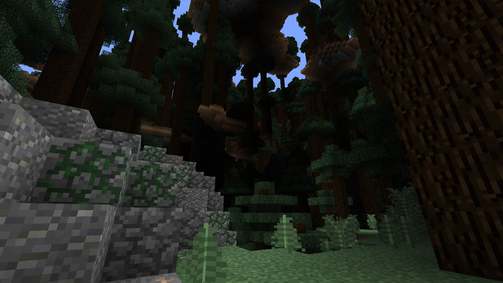 Giant Tree Taiga biome with a large boulder
