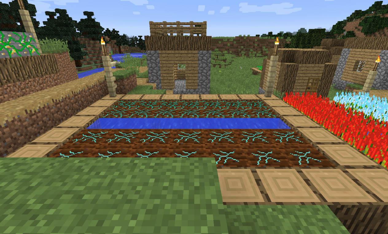 Mineral Soil Field.
