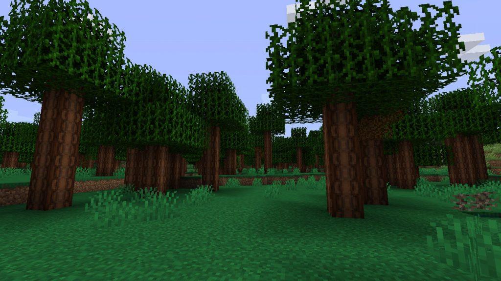 Petrified Chert Forest