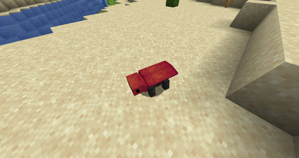 Crimson Cicaptera