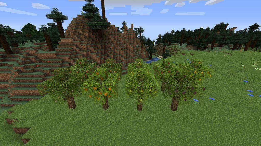 Trees (1.1.6)
