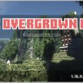 The Overgrown City Map